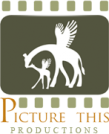 Picture This Productions